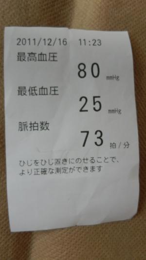 Pc160025